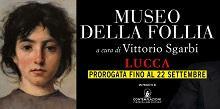 Locandina Museo della follia